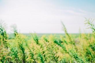 风光摄影 | 南北湖边的那片围垦